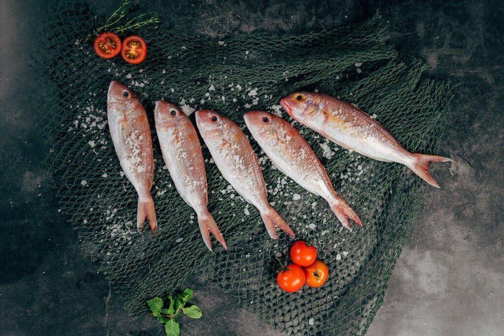 ψάρια, πρωτεΐνες, ωμέγα 3, υδράργυρος, μέταλλα, διατροφική αξία
