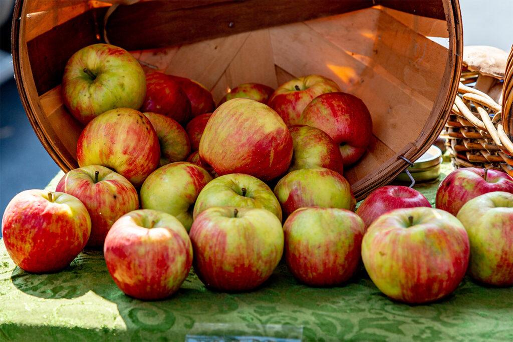 μήλα, αντιοξειδωτικά, έντερο, ανοσοποιητικό, δυσκοιλιότητα